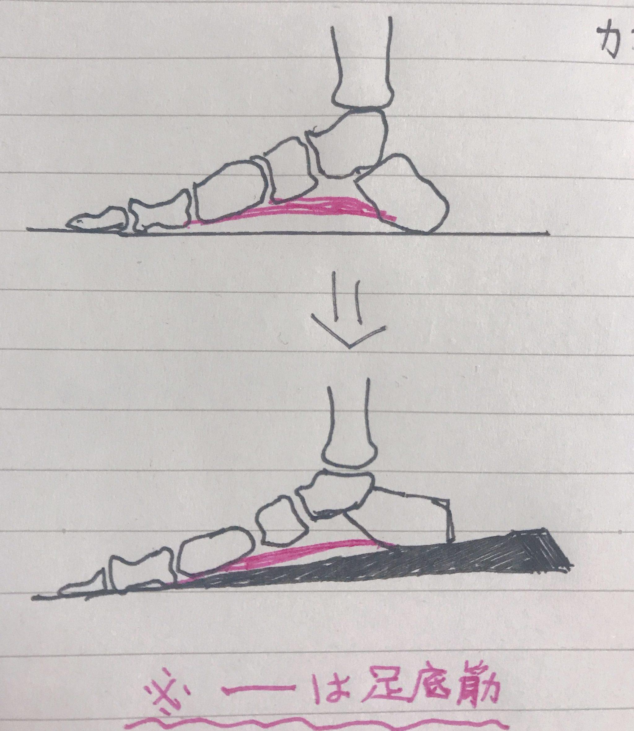 足裏が一番大切な理由。足底筋膜炎の改善方法も解説。